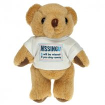 5 inch Honey bear wearing a t-shirt