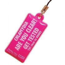 Phone screen cleaner charm