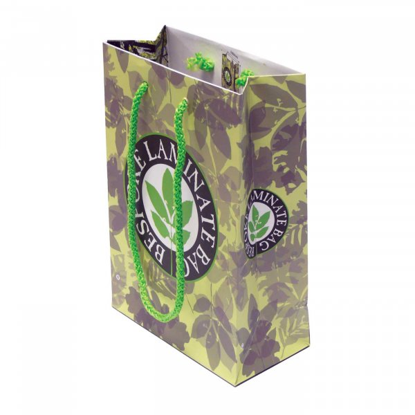 Laminated small gift bag